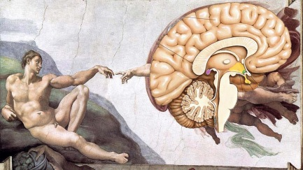 Creation of Adams Brain