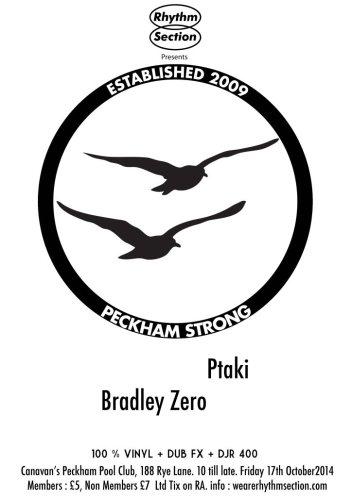 RHYTHM SECTION - Ptaki